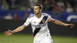 Zlatan Ibrahimovic war einmal mehr der große Star bei LA Galaxy