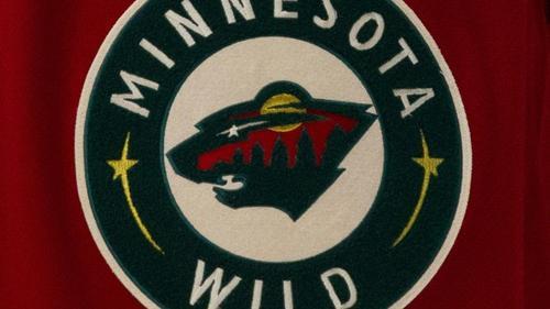 Minnesota Wild befördert Nico Sturm