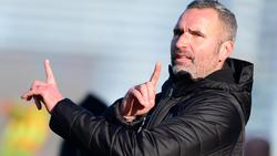 Tim Walter ist der neue Trainer des VfB Stuttgart