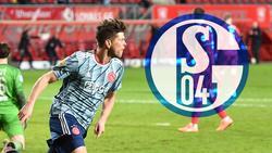 Klaas-Jan Huntelaar wird wohl demnächst wieder für den FC Schalke auf Torejagd gehen