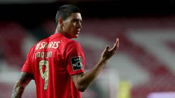 Darwin Núnez soll das Interesse des FC Bayern geweckt haben