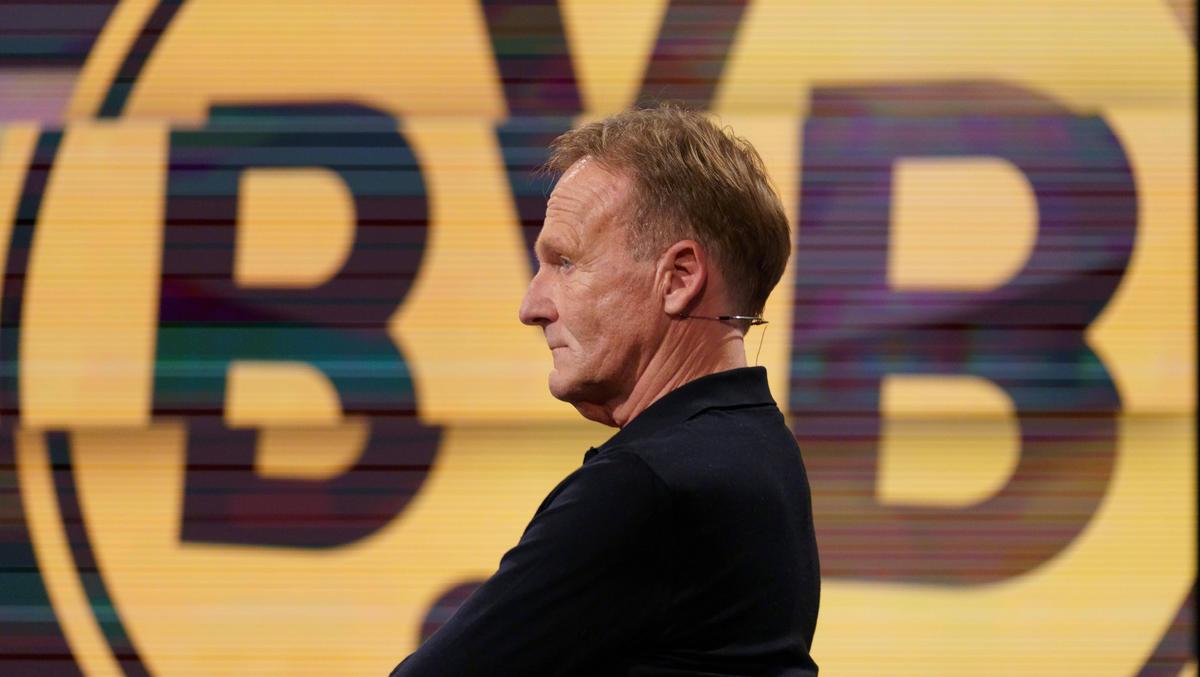 Spricht zu den BVB-Aktionären: Hans-Joachim Watzke