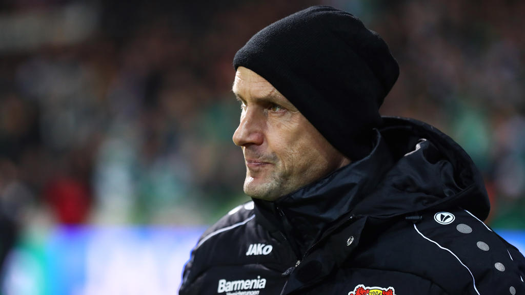 Heiko Herrlich hat mit Bayer in Leipzig nichts zu verlieren