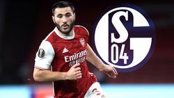 Sead Kolasinac spielt bis Sommer 2020 wieder für den FC Schalke 04