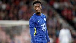 Callum Hudson-Odoi wollte vom FC Chelsea zum BVB wechseln