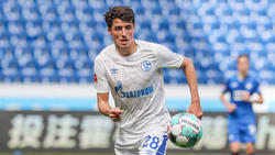 Alessandro Schöpf wechselt vom FC Schalke 04 zu Arminia Bielefeld
