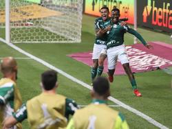 Palmeiras sueña con levantar la Libertadores.