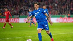 Verlängert bis 2023 in Hoffenheim: Steven Zuber