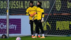 Roman Bürki (r.) und Marwin Hitz (l.) hüten das BVB-Tor