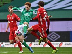 SV Werder Bremen vs FC Bayern Muenchen