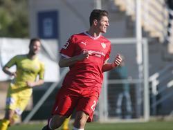 Mario Gomez soll der Leitwolf des VfB Stuttgart werden