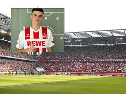 João Queirós spielt ab sofort für den 1. FC Köln (Bildquelle: fc-koeln.de)