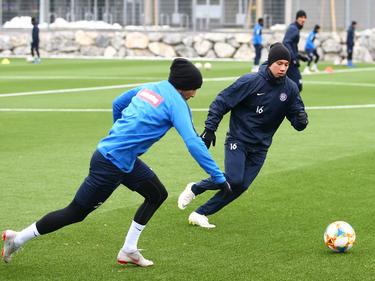 Nun spielt wieder der Ball die Hauptrolle im Austria-Training