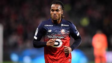 Renato Sanches wechselte im Sommer vom FC Bayern zum OSC Lille