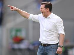 Christian Titz und der HSV haben in Hoffenheim den nächsten Rückschlag kassiert