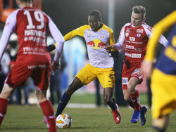 Salzburg testete gegen Steyr