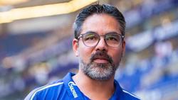 Hofft noch auf Verstärkungen: Schalke-Coach David Wagner