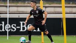 Fällt mit gebrochenem Ellenbogen für den VfB Stuttgart aus: Erik Thommy