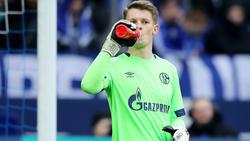 Alexander Nübel ist seit dem Winter die Nummer eins beim FC Schalke 04