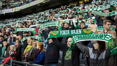 Hammarby-Fans jubelten zusammen mit ihrem Spieler Kennedy Bakircioglu
