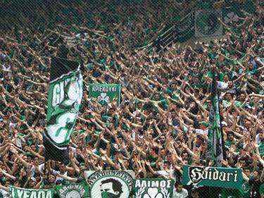Die Panathinaikos-Anhänger glauben noch fest ans Weiterkommen gegen Gabala FK