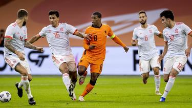 Niederlande bleiben unter Frank de Boer weiter sieglos