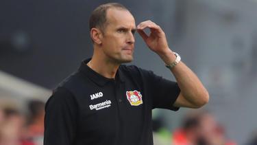 Heiko Herrlich und die Werkself stehen gegen Mainz unter Druck