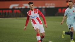 Zeljko Gavric soll bei Eintracht Frankfurt im Fokus stehen