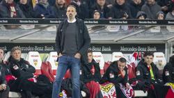 Pellegrino gewann sein Debüt als Trainer des VfB Stuttgart