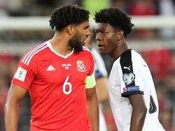 Ashley Williams vs David Alaba