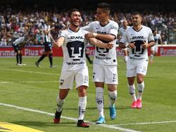 Pumas suma 7 unidades en la cúspide de la tabla.