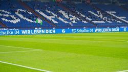 Der 1. FC Schweinfurt 05 fiebert der Pokal-Partie beim FC Schalke 04 entgegen