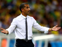 Sabri Lamouchi ist neuer Trainer von Stade Rennes