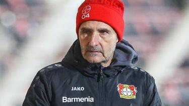 Achim Feifel bleibt Coach bei Bayer Leverkusen