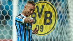 Geht Everton in der nächsten Saison für den BVB auf Torejagd?