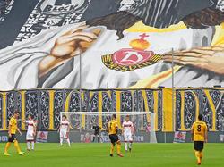 Dynamo Dresden legt Berufung gegen DFB ein