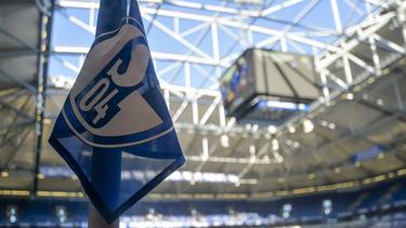 Der FC Schalke 04 sucht offenbar schon einen neuen Trainer