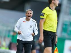 Rapid ist in der Bundesliga nach wie vor ungeschlagen