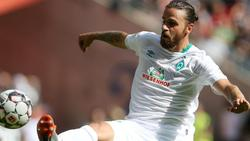 Wieder fit: Werder Bremens Martin Harnik