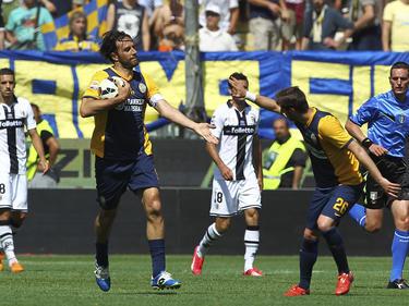 Luca Toni von Hellas Verona lässt sich für seinen Treffer gegen Parma beglückwünschen