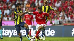 Benfica in der Pole