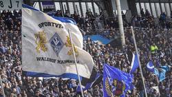 Mannheim trifft am kommenden Spieltag auf Kaiserslautern