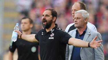 Armin Veh ist der Geschäftsführer Sport des 1. FC Köln. Foto: Rolf Vennenbernd
