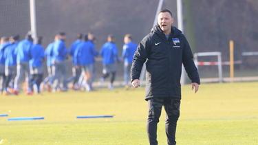 Pál Dárdai und Hertha BSC wollen offensiv überzeugen