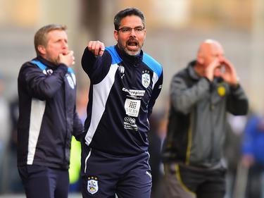 David Wagner hofft mit Huddersfield Town auf den Aufstieg ins englische Oberhaus