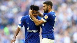 Schalke 04 überzeugt im Test gegen Florenz
