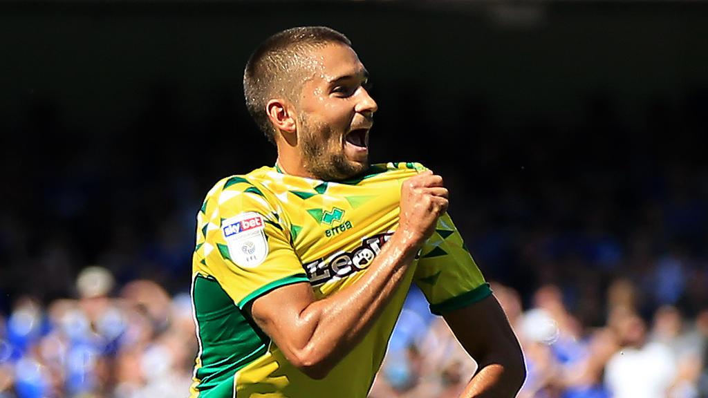 Moritz Leitner spielt mit Norwich City um den Aufstieg