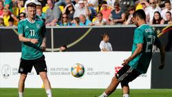 Marco Reus (l.) ist einer der Hoffnungsträger im DFB-Team