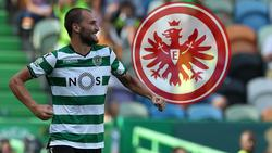 Bas Dost wechselt zu Eintracht Frankfurt in die Bundesliga