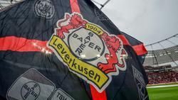 Boykott der Leverkusener Fanszene bei Montagsspiel